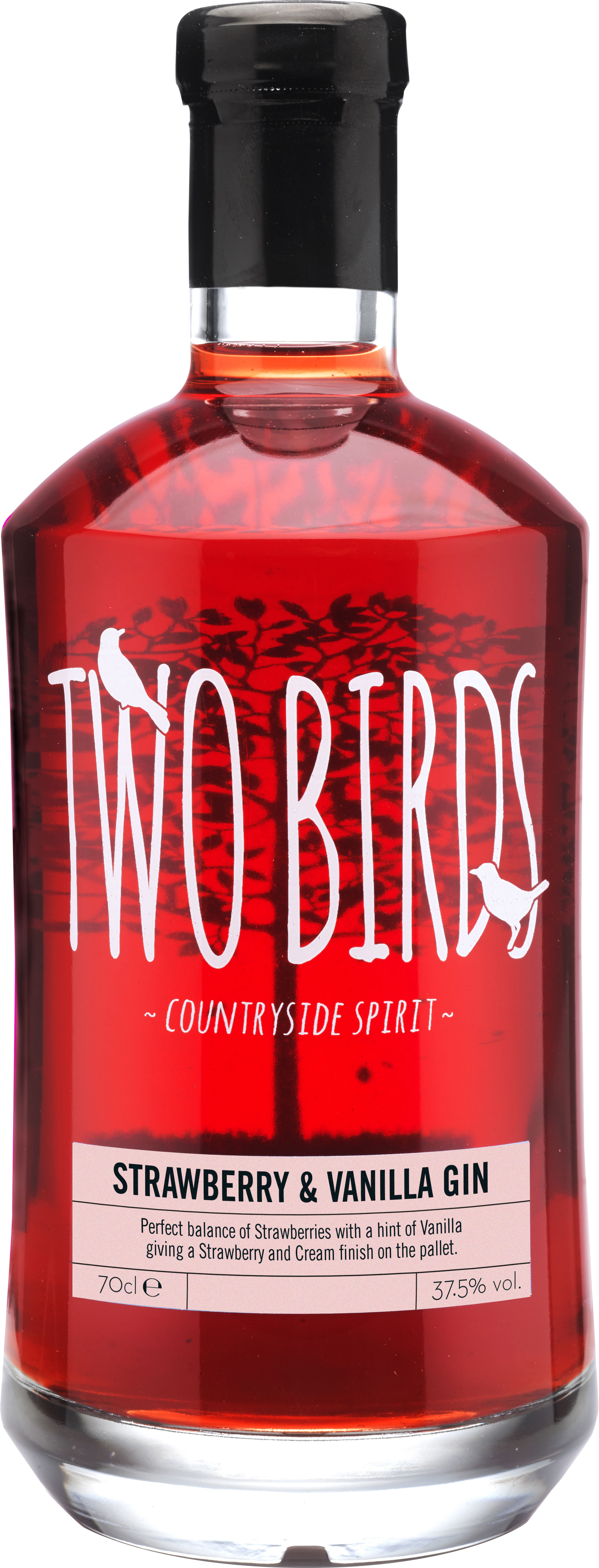 Two Birds - Strawberry and Vanilla Gin 70cl Bottle